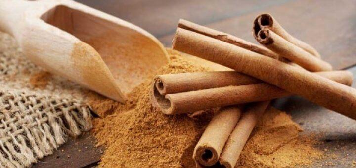 Dalchini Cinnamon health benefits